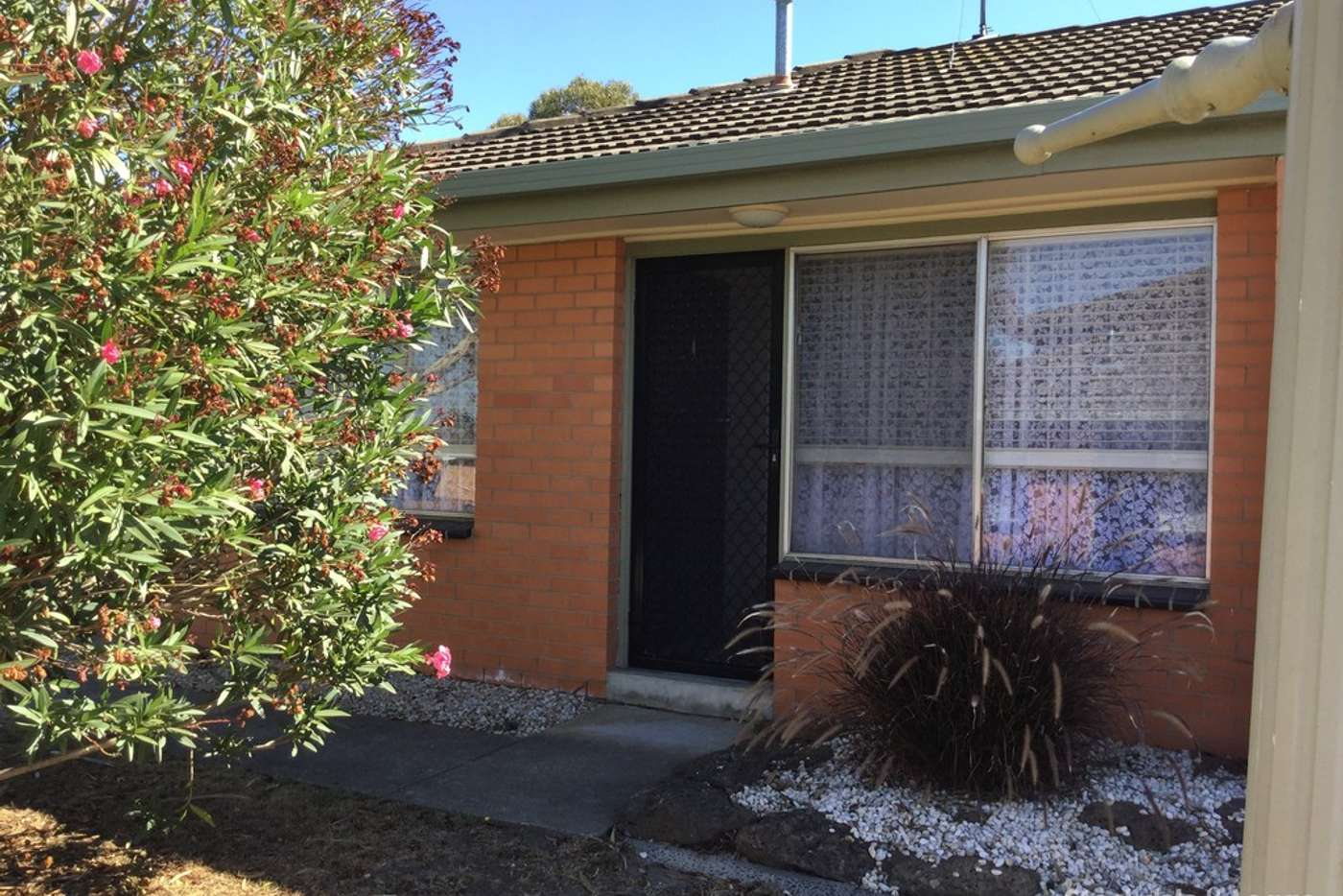 Main view of Homely unit listing, 1/62 James Street, Belmont VIC 3216
