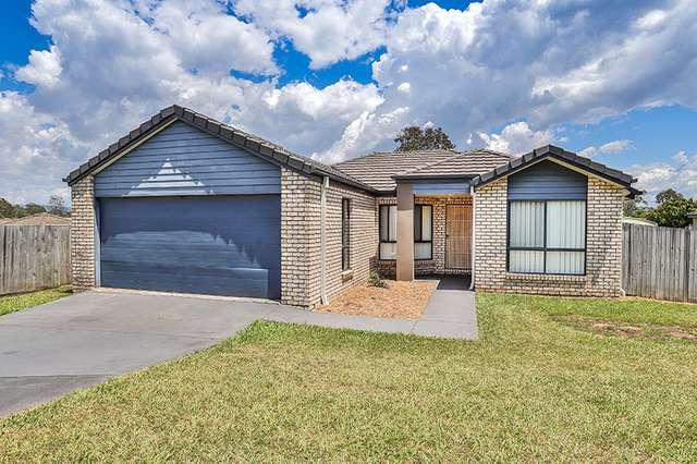 12 Drew Court, Morayfield QLD 4506