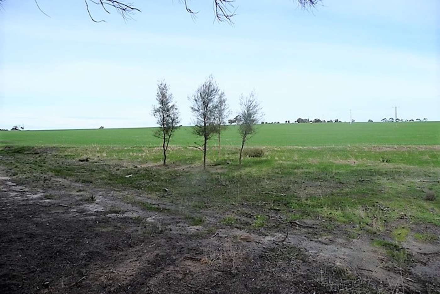 Main view of Homely cropping listing, Lt 501 & Lt34 Great Southern Highway, Beverley WA 6304