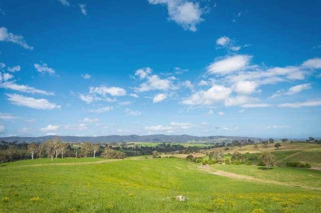 335 Angledale Rd, Angledale NSW 2550
