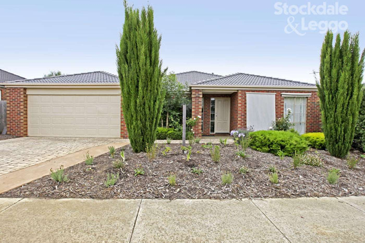Main view of Homely house listing, Room 3 / 30 Daly Boulevard, Highton VIC 3216