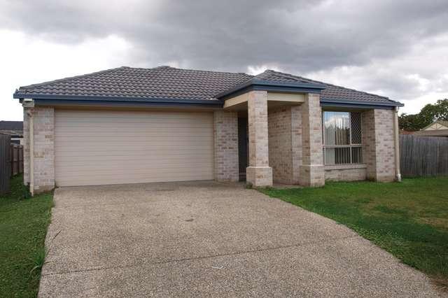 15 Ronayne Cct, One Mile QLD 4305
