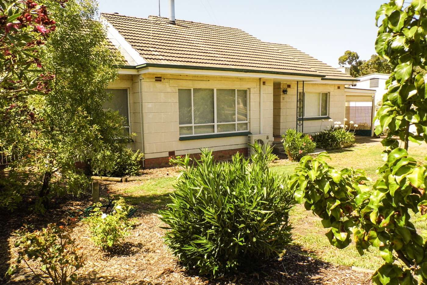 Main view of Homely house listing, 11 LOVEDAY STREET, Naracoorte SA 5271