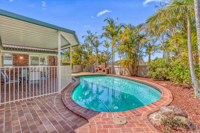 74 Falconglen Place, Ferny Grove QLD 4055