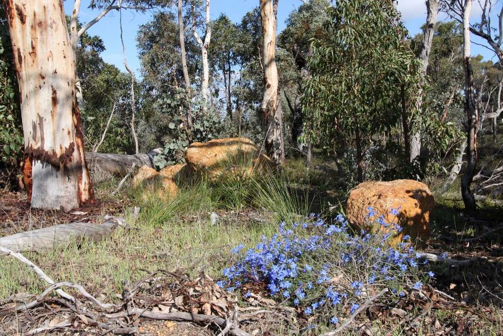 Fourth view of Homely residentialLand listing, Lot 420 Woylie Rise, Bakers Hill WA 6562