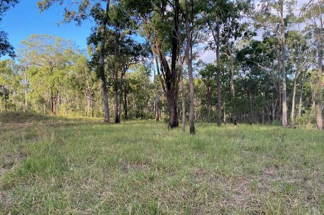Lot 48 Lowmead Road, Lowmead QLD 4676