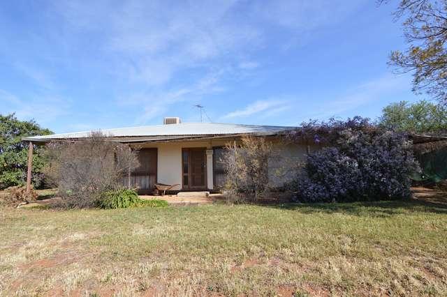 59 Jacaranda Road, Coomealla NSW 2717