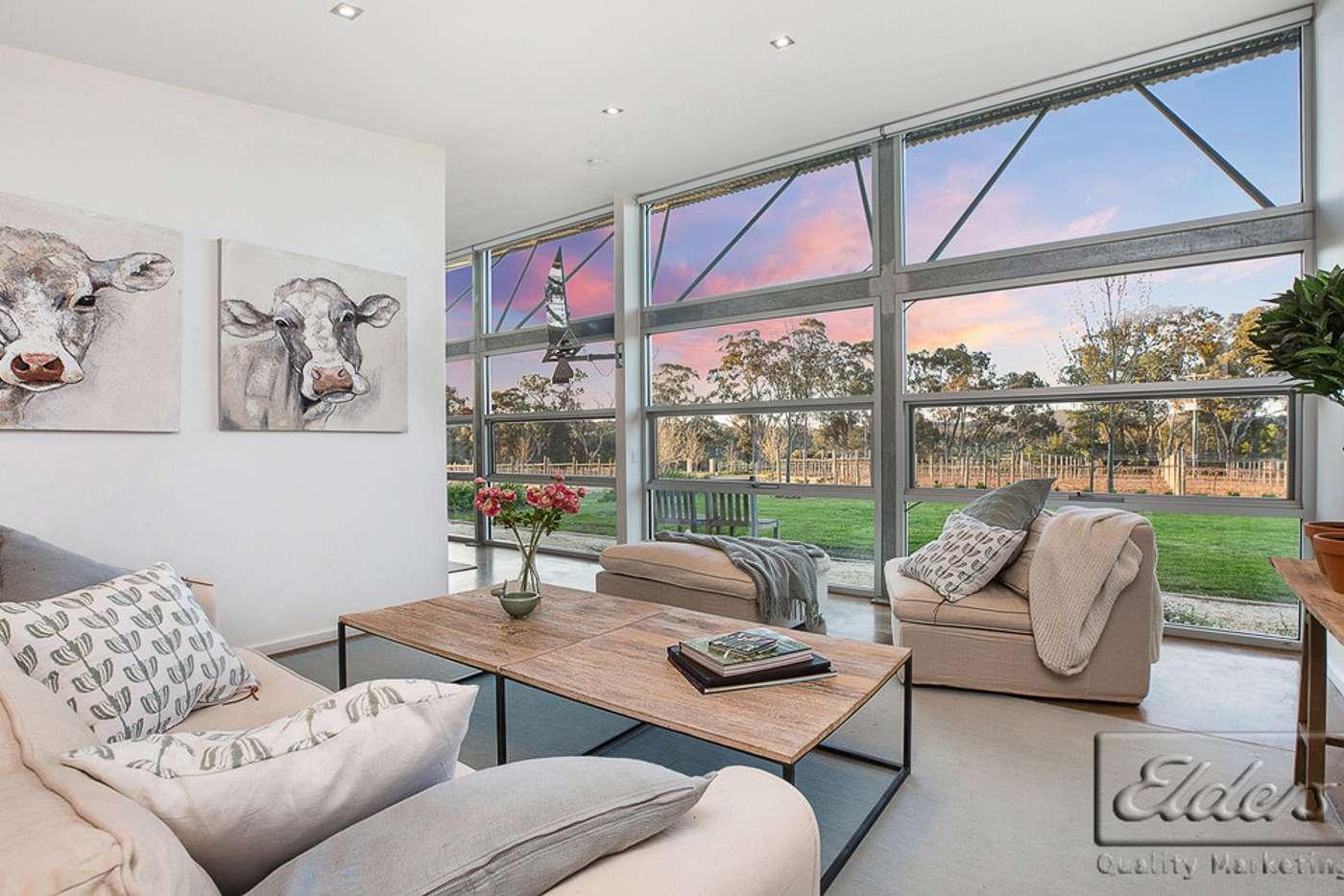 Seventh view of Homely acreageSemiRural listing, 260 Mandurang Road, Mandurang VIC 3551