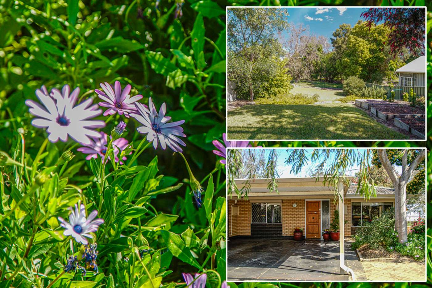 Sixth view of Homely semiDetached listing, 31B Helena Street, Guildford WA 6055