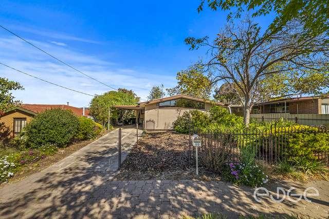 29 Tania Avenue, Windsor Gardens SA 5087