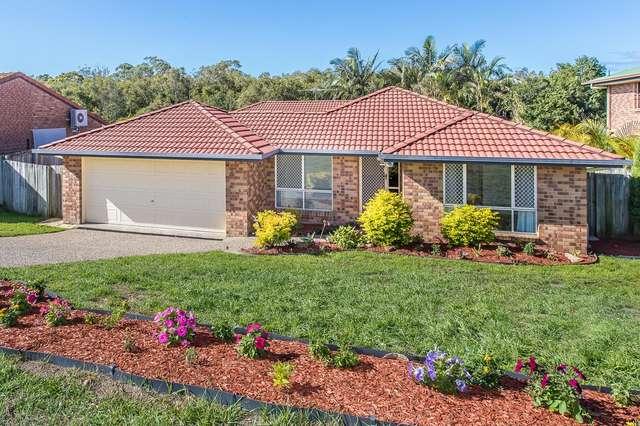 36 LAPWING CRES, Mango Hill QLD 4509