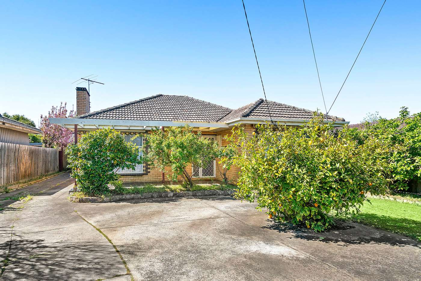 Main view of Homely house listing, 125 Centre Dandenong Road, Cheltenham VIC 3192