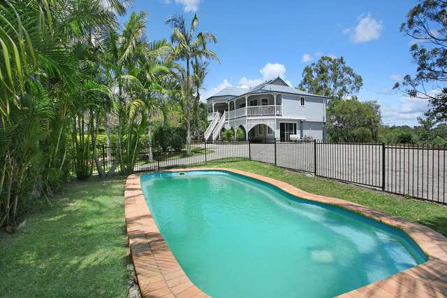 68 Tallowwood Place, Black Mountain QLD 4563