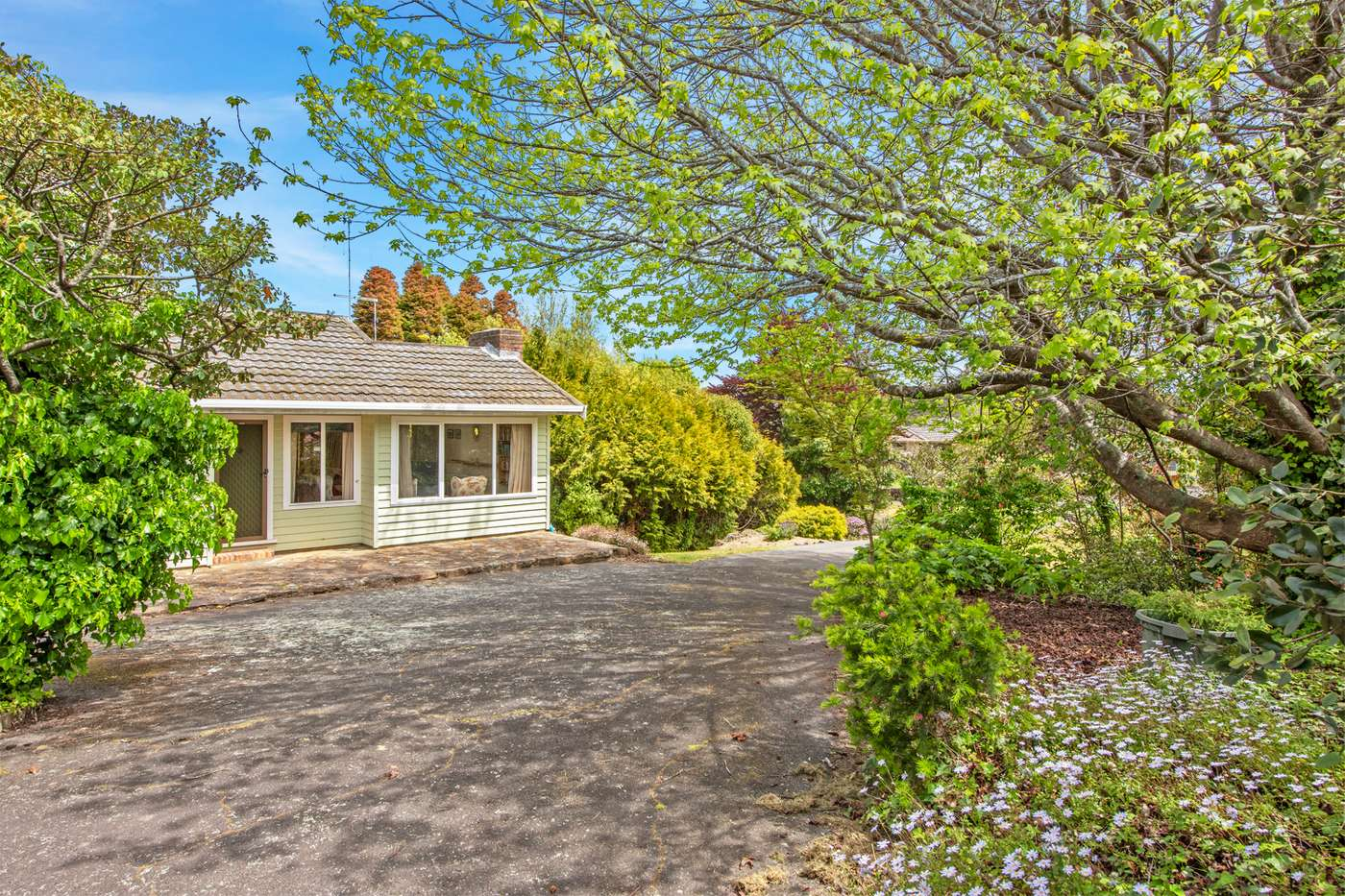 Main view of Homely house listing, 133 South Road, West Ulverstone, TAS 7315