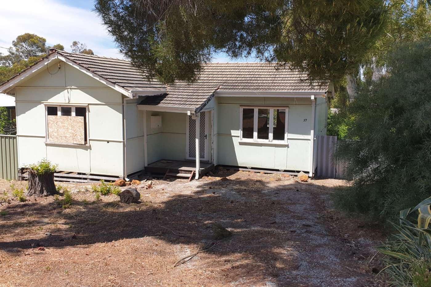 Main view of Homely house listing, 37 Lobelia Avenue, Wundowie WA 6560