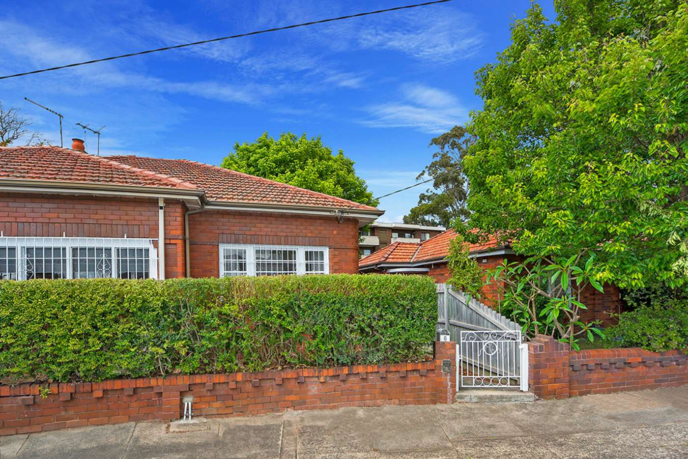 Main view of Homely semiDetached listing, 8 Somerville Avenue, Ashfield NSW 2131