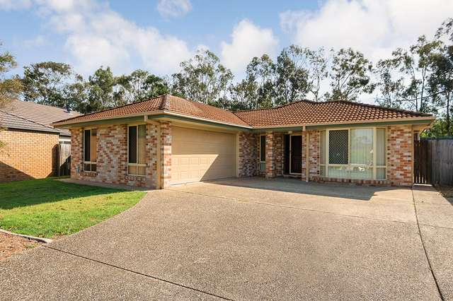 17 Bullen Circuit, Forest Lake QLD 4078