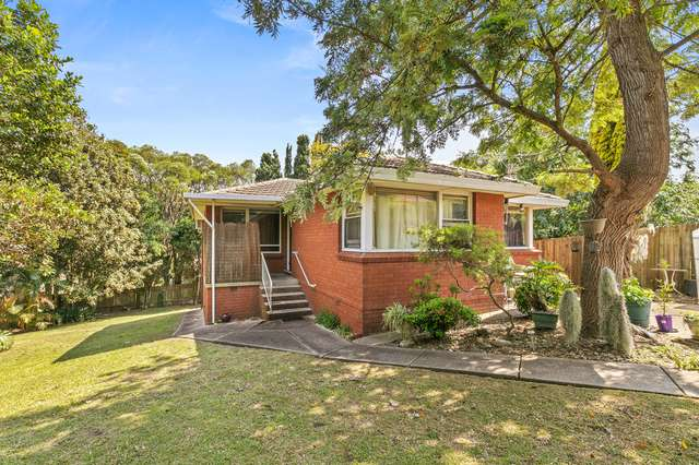 3a Chaleyer Street, Willoughby NSW 2068
