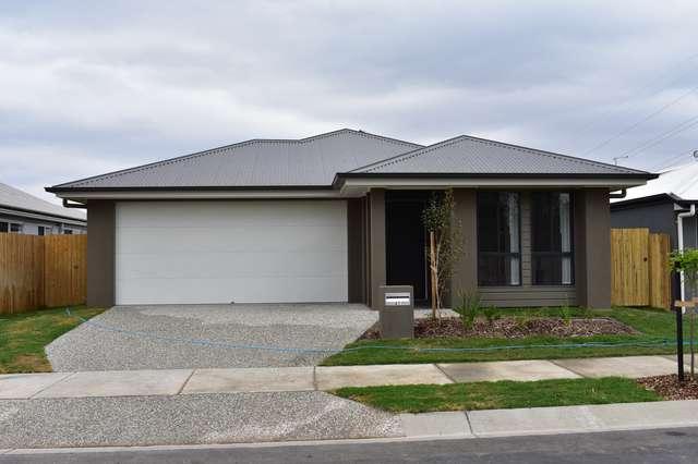 41 Rhea De Wit Drive, Ripley QLD 4306