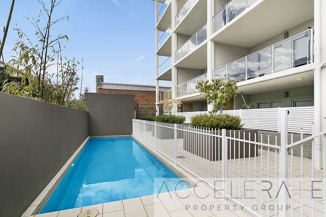 8/41 Fortescue Street, Spring Hill QLD 4000