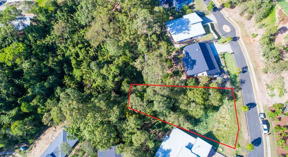 23 Birdwing Forest Place