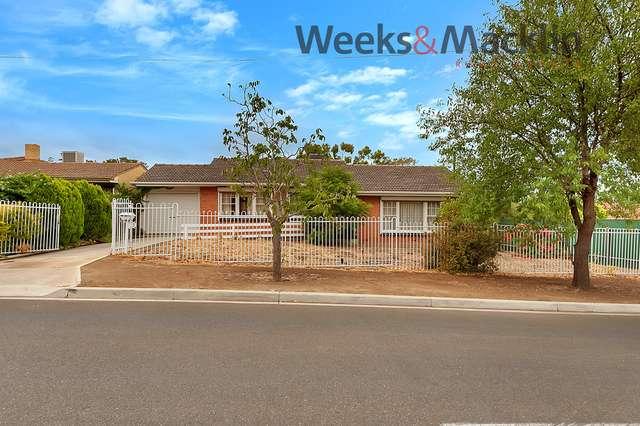 17 McShane Street, Campbelltown SA 5074