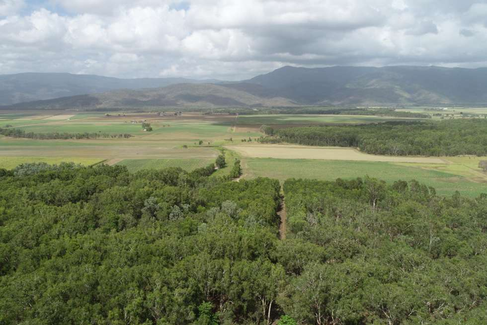 Third view of Homely acreageSemiRural listing, 349 AMOS ROAD, Coolbie QLD 4850