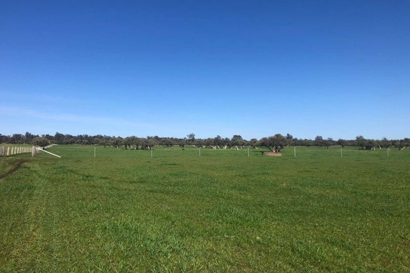 Sixth view of Homely livestock listing, Lot 7 Clarke Road, Elgin WA 6237