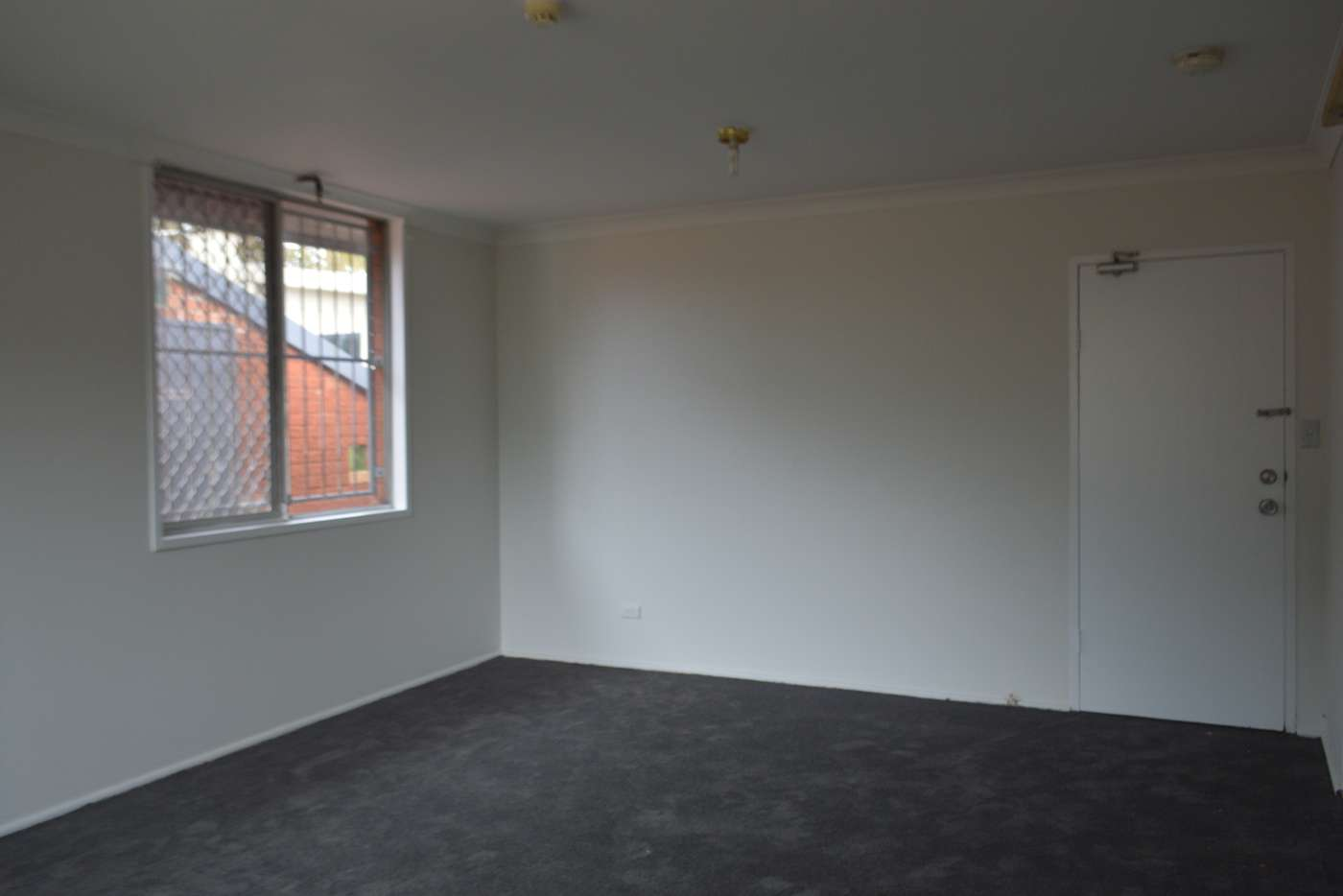 Main view of Homely studio listing, 5/1003 Botany Road, Mascot NSW 2020