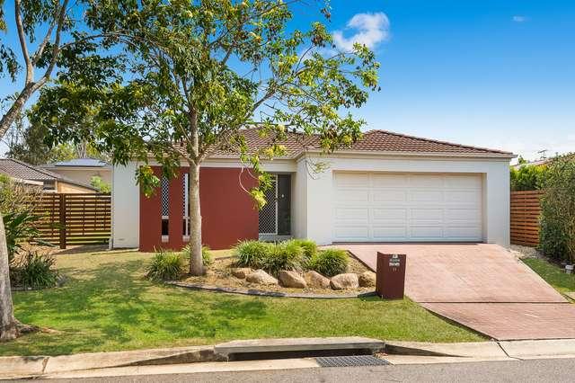 11 Cyperus Crescent, Carseldine QLD 4034