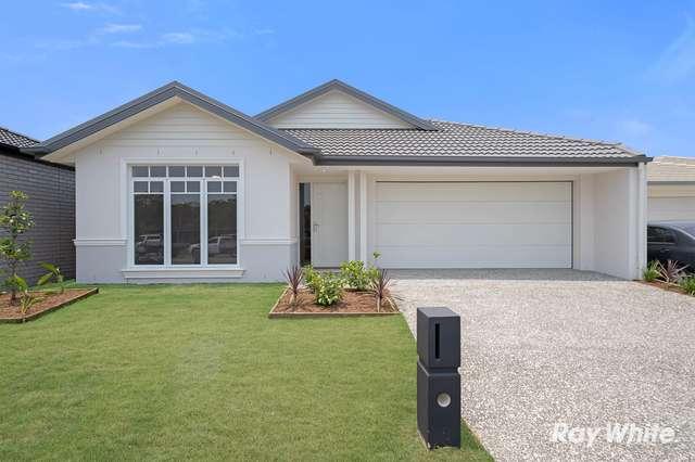 15 Riverland Road, Coomera QLD 4209