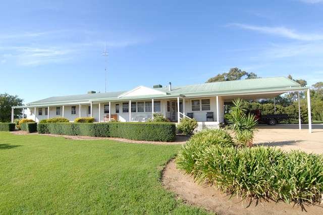 40 FLANAGANS LANE, Deniliquin NSW 2710