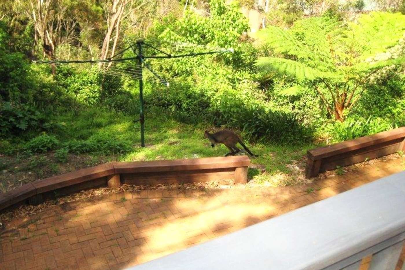 Main view of Homely studio listing, 1 Sir Thomas Mitchell Drive, Davidson NSW 2085