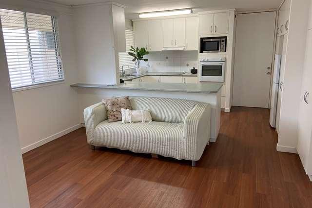 8 Bejimba Street, Kenmore QLD 4069
