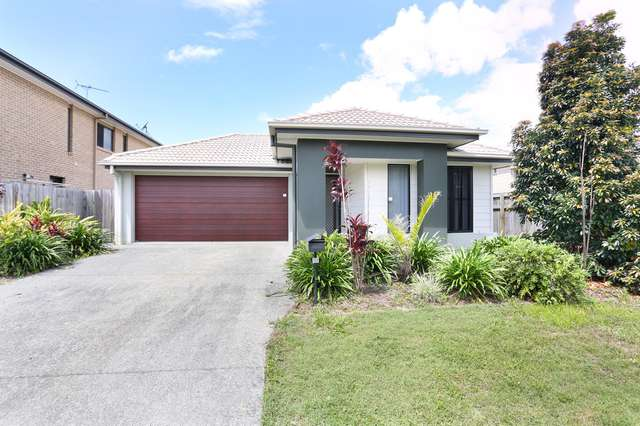 11 Tarlo Street, North Lakes QLD 4509