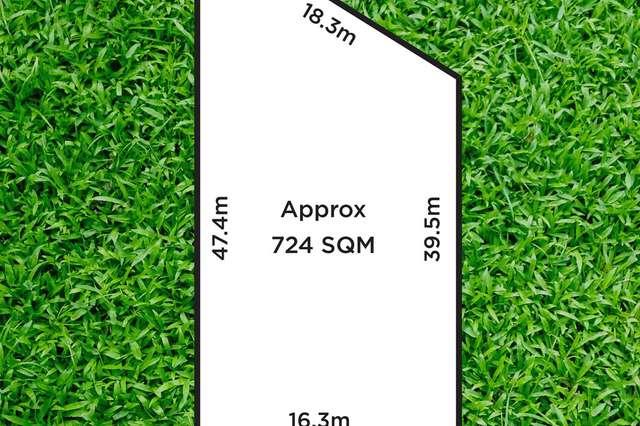 24 Charles Street, Ascot Park SA 5043