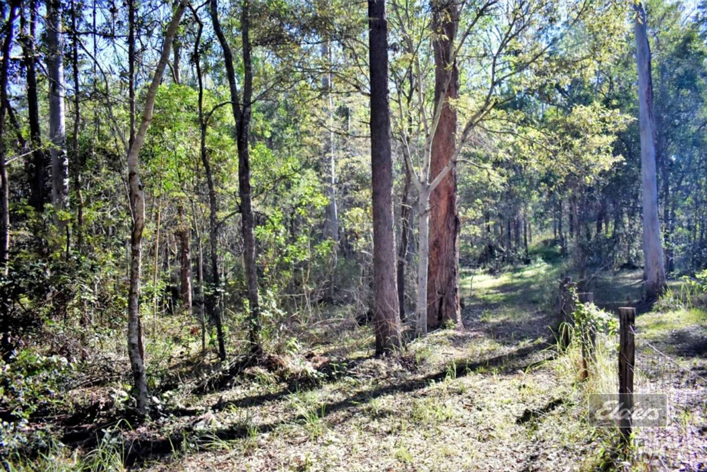 Main view of Homely residentialLand listing, Lot 308 Darwin Road, Bauple QLD 4650