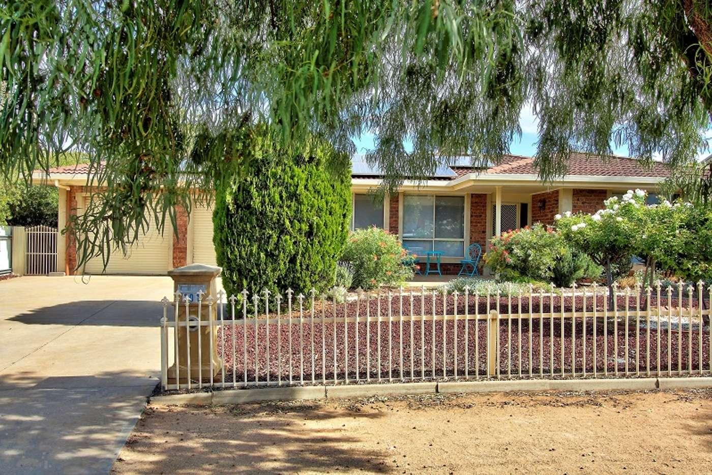 Main view of Homely house listing, 101 Kay Avenue, Berri SA 5343