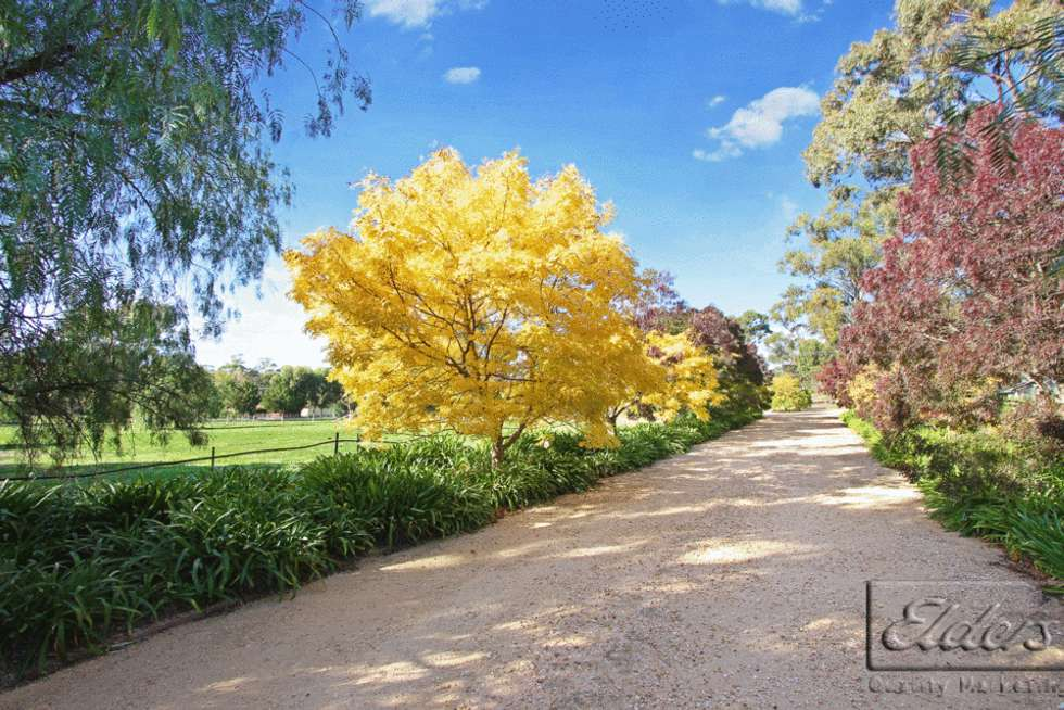 Third view of Homely acreageSemiRural listing, 54 Pearces Road, Mandurang VIC 3551