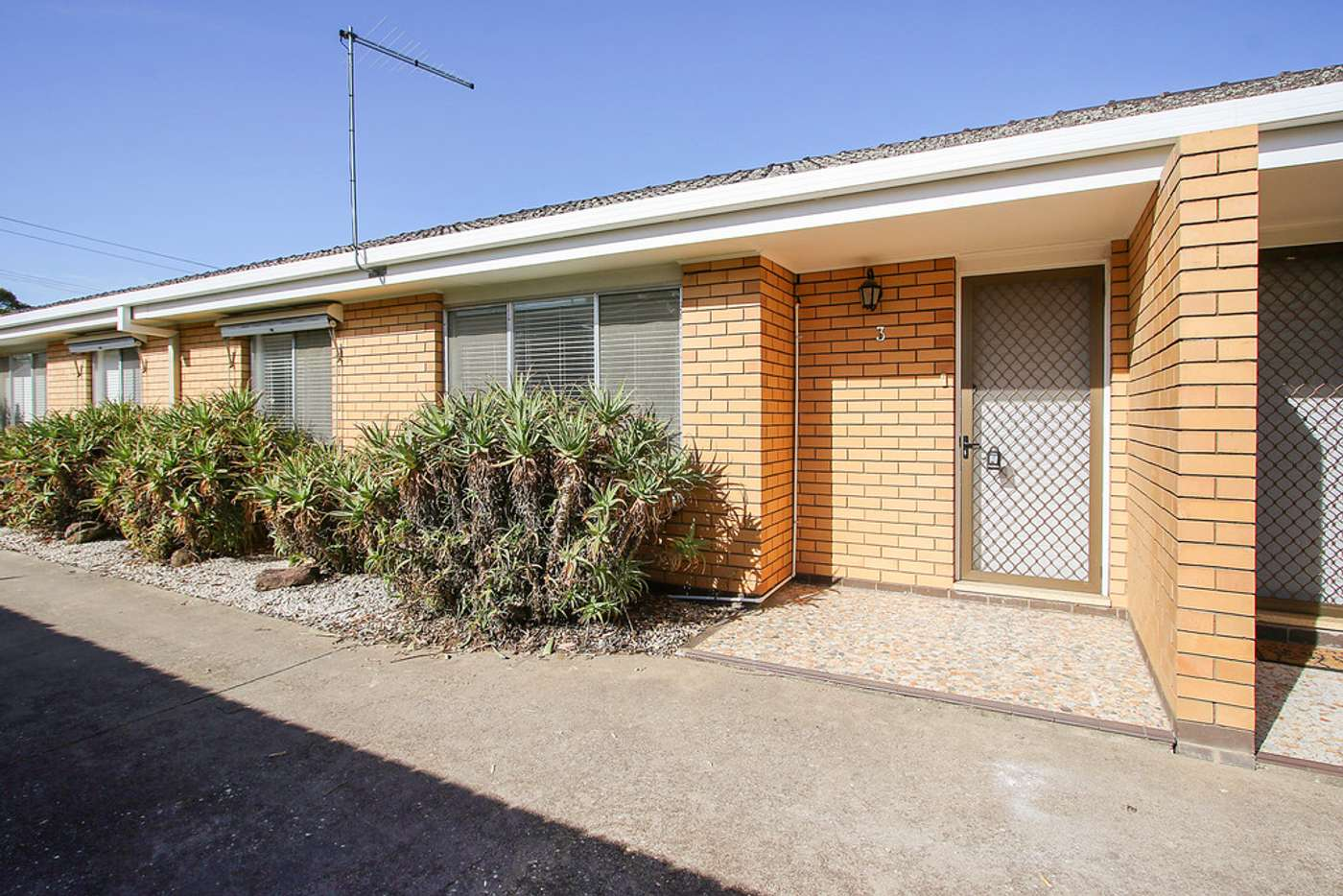 Main view of Homely unit listing, 3/461 Prune Street, Lavington NSW 2641