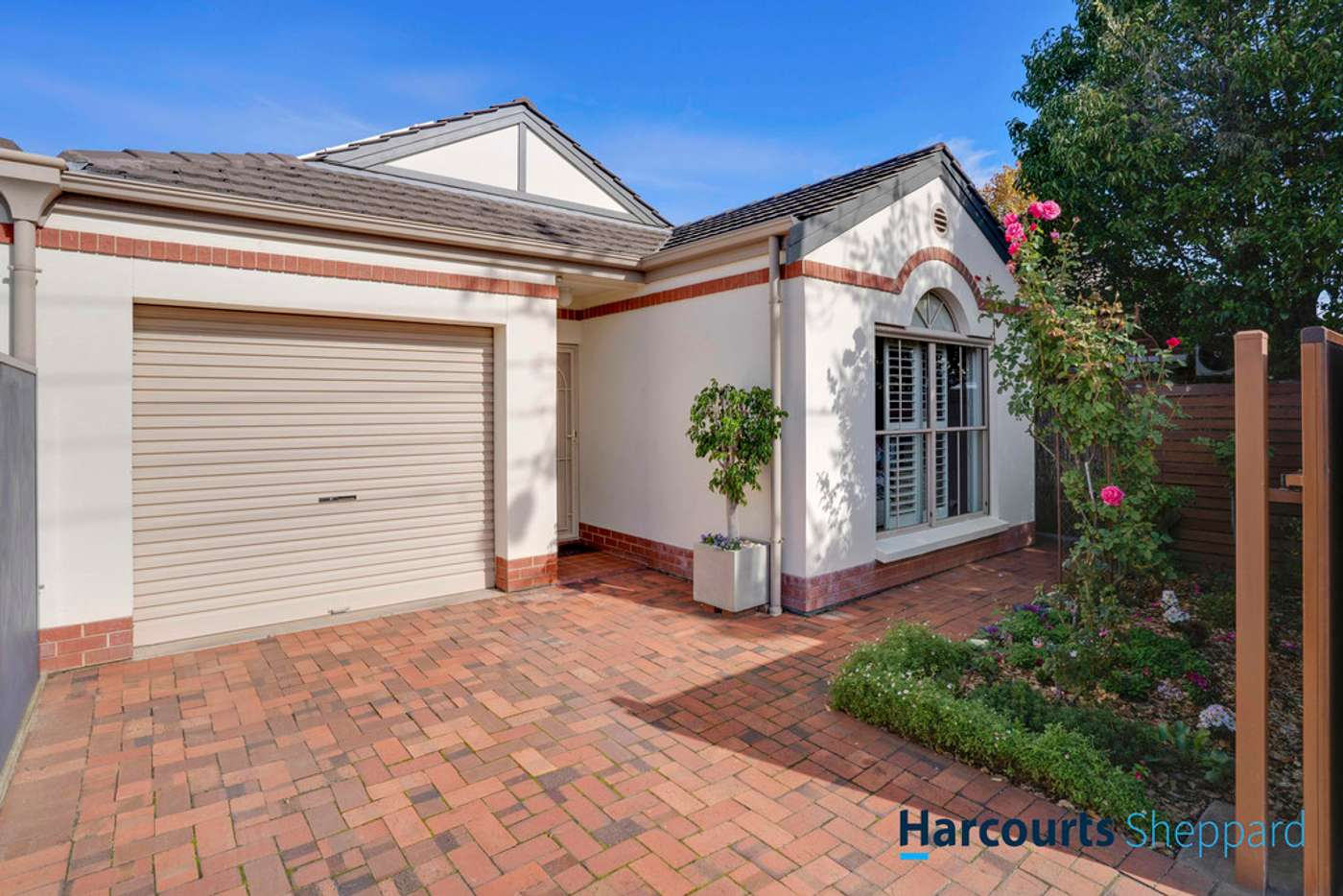 Main view of Homely house listing, 17B Norma Street, Mile End SA 5031