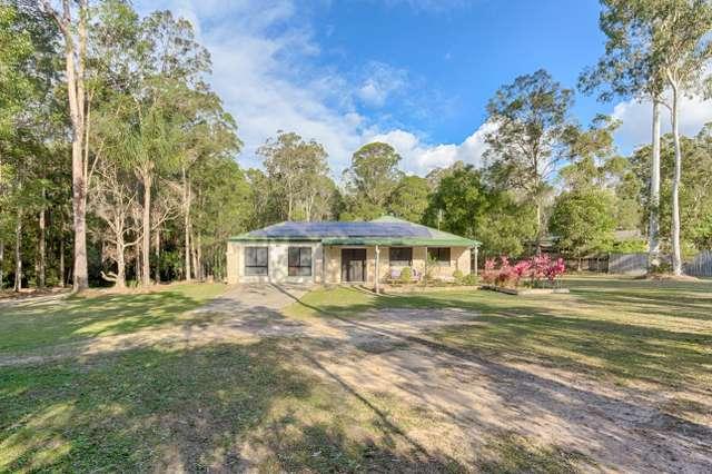 3 Sugargum Place, Black Mountain QLD 4563