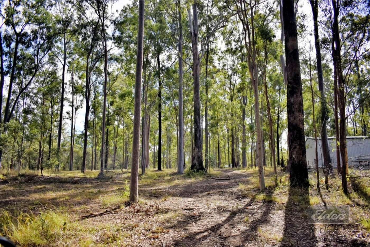 Seventh view of Homely residentialLand listing, Lot 185 Van Hensbroek Road, Bauple QLD 4650