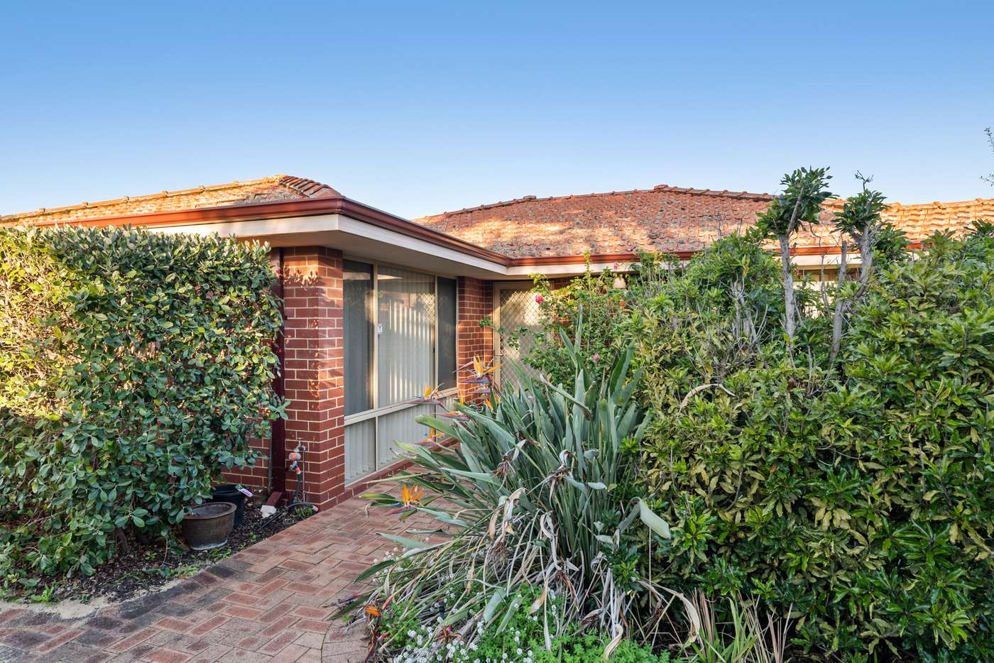 Main view of Homely villa listing, 2/40 Third Avenue, Mount Lawley WA 6050