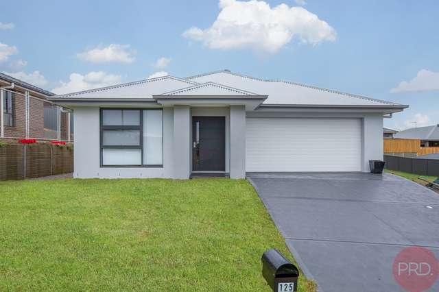 125 Saddlers Drive, Gillieston Heights NSW 2321