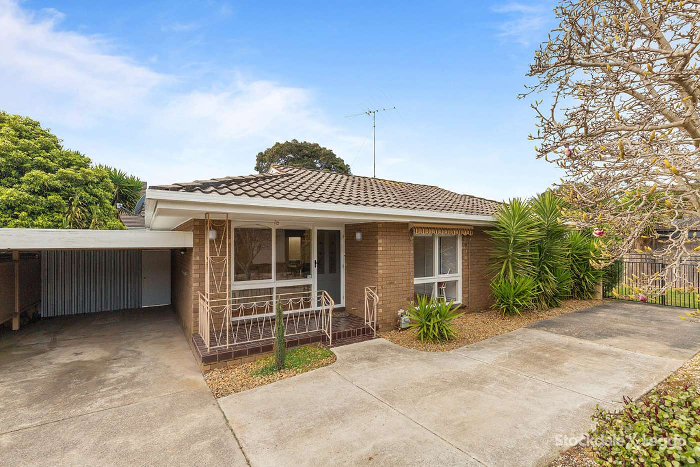 Main view of Homely unit listing, 3/165 Barrabool Road, Highton VIC 3216