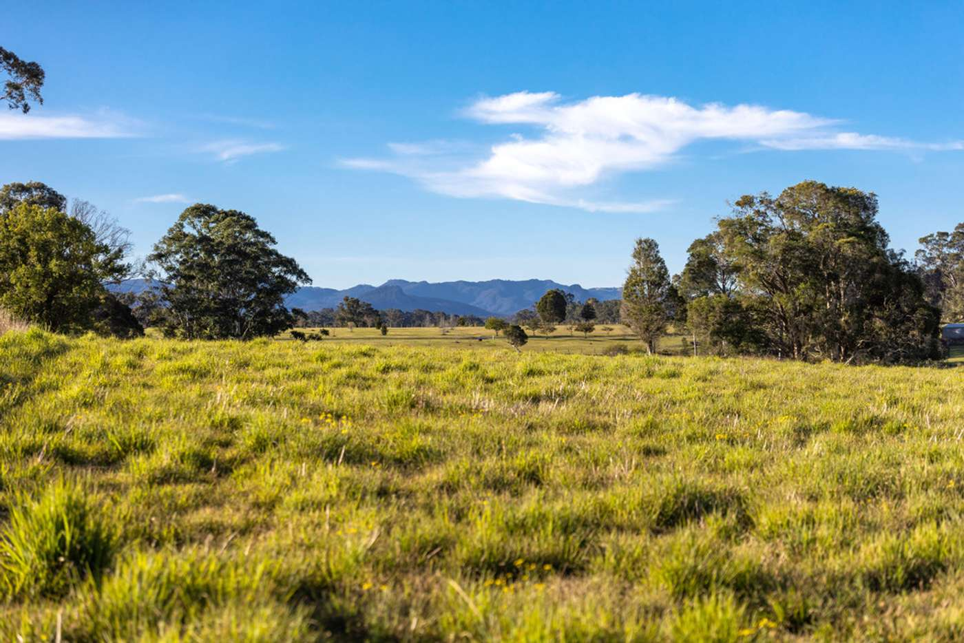 Sixth view of Homely lifestyle listing, 495 Comboyne Road, Wingham NSW 2429