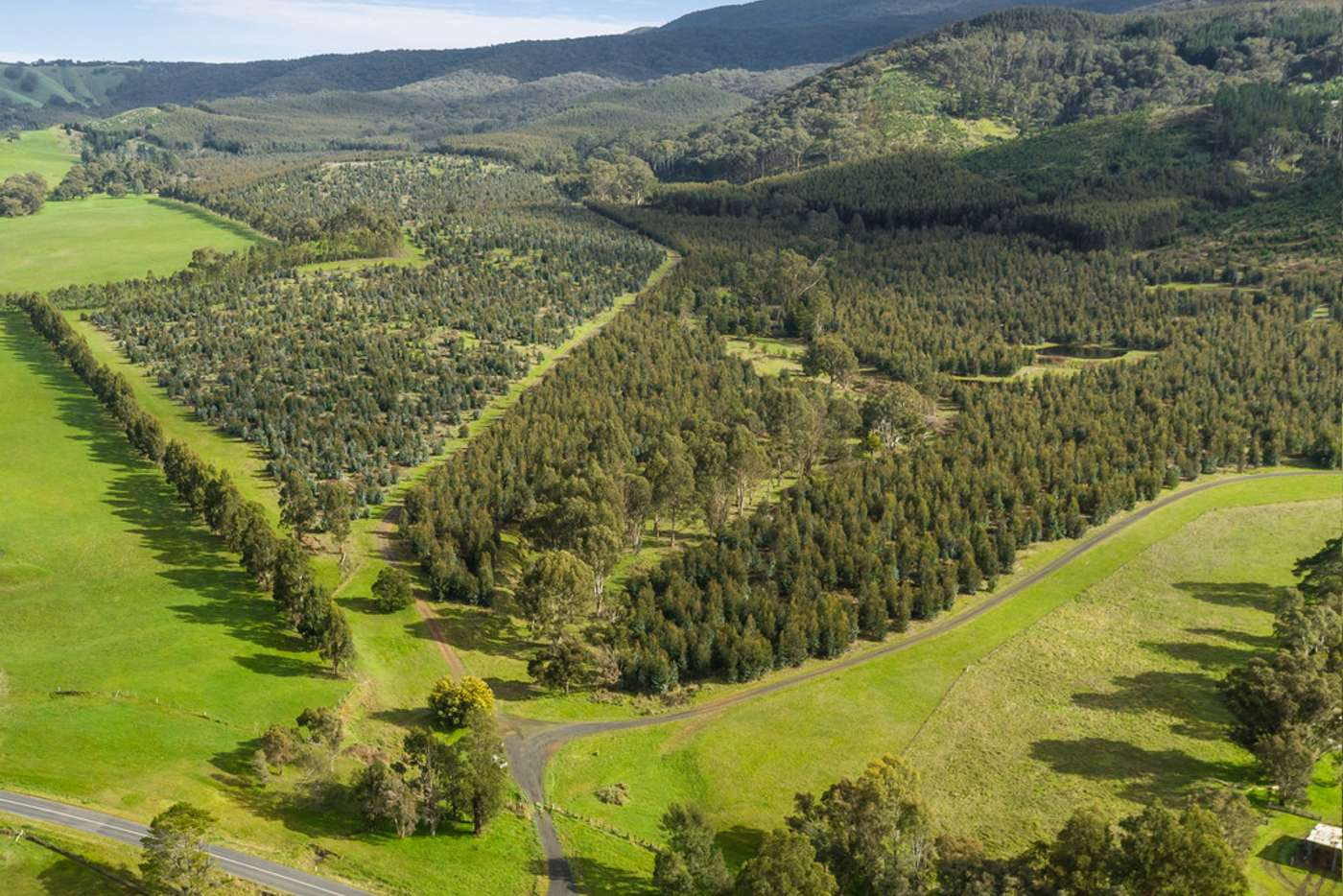 Main view of Homely horticulture listing, 910 King Parrot Creek Road, Strath Creek VIC 3658