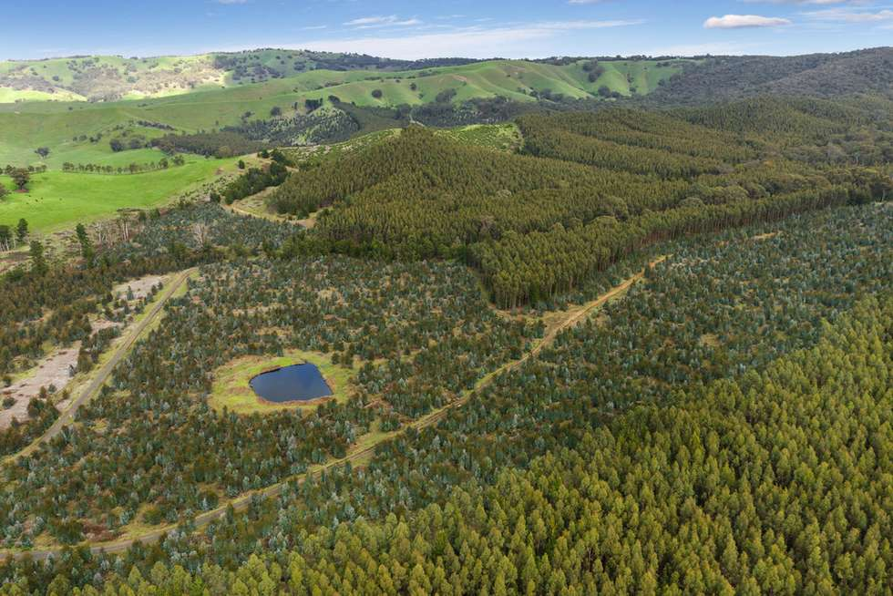 Second view of Homely horticulture listing, 910 King Parrot Creek Road, Strath Creek VIC 3658