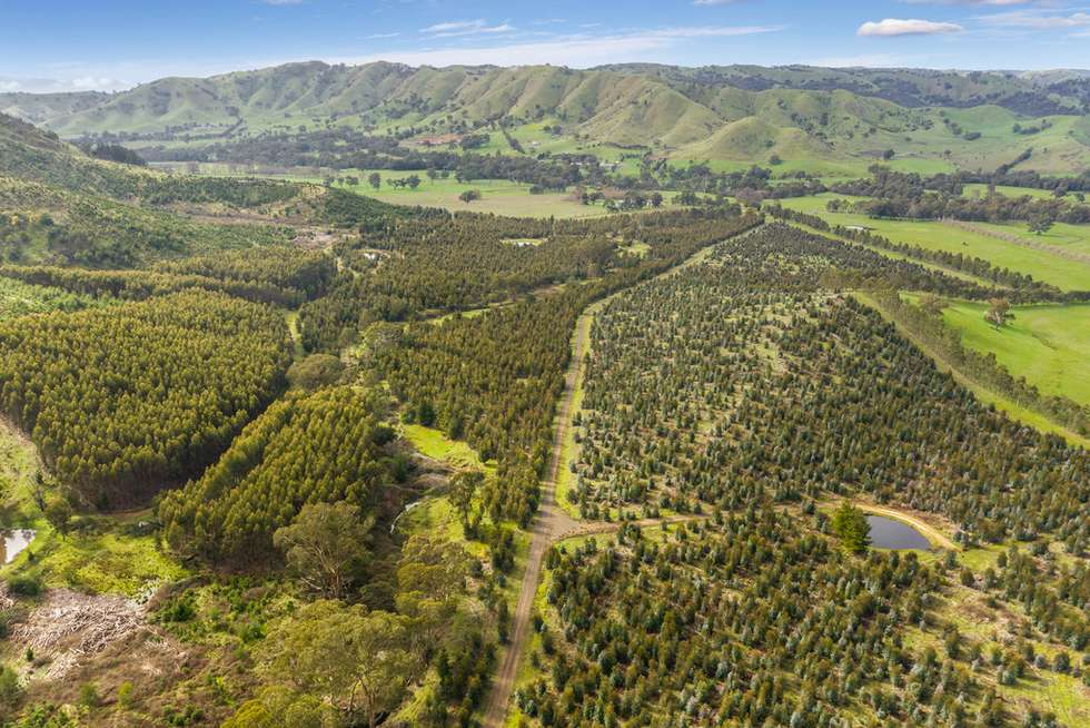 Third view of Homely horticulture listing, 910 King Parrot Creek Road, Strath Creek VIC 3658